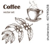 hand drawn vintage coffee plant.... | Shutterstock .eps vector #407490658