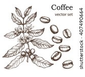 hand drawn vintage coffee plant.... | Shutterstock .eps vector #407490664
