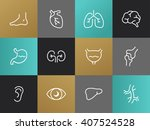 set of modern vector body parts ... | Shutterstock .eps vector #407524528