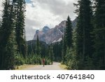 lake o'hara trail | Shutterstock . vector #407641840