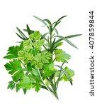 fines herbes  a combination of... | Shutterstock . vector #407859844