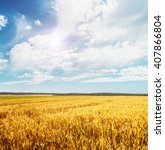 beautiful view of the field and ...   Shutterstock . vector #407866804