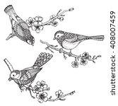 Set Of Hand Drawn Ornate Birds...