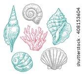 Sea Shell And Coral.  Nautilus...