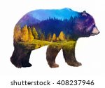 the grizzly bear on white...   Shutterstock . vector #408237946