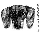 dachshund puppy. dog portrait.... | Shutterstock .eps vector #408341500