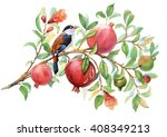 pomegranate branch watercolor  | Shutterstock . vector #408349213