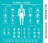 medical infographics. lungs... | Shutterstock .eps vector #408446758