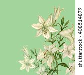 lily flower watercolor...   Shutterstock . vector #408514879