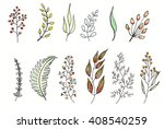 foliage  watercolor and ink... | Shutterstock . vector #408540259