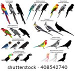 collection of different species ... | Shutterstock .eps vector #408542740