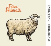 White Sheep Isolated  Vector...