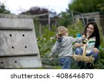 a young girl pulling up onions... | Shutterstock . vector #408646870