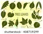pictograms set  tree leaves ... | Shutterstock .eps vector #408719299