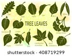 Pictograms Set  Tree Leaves ...