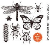 images set of different insects ... | Shutterstock .eps vector #409001530