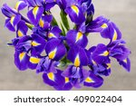 Purple Iris Flower Vase   On...