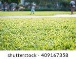 green grass in garden with... | Shutterstock . vector #409167358
