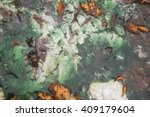 autumn leaves and emerald water ... | Shutterstock . vector #409179604