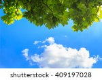 under tree  green leaves  view... | Shutterstock . vector #409197028