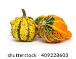 Decorative Gourd Isolated On...