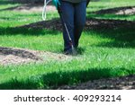 spraying pesticide in the lawn | Shutterstock . vector #409293214