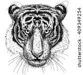 tiger head sketchy  vector line ... | Shutterstock .eps vector #409349254