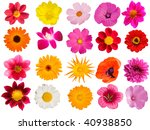flowers  decorative  collection | Shutterstock . vector #40938850