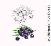 acai vector illustration | Shutterstock .eps vector #409577554