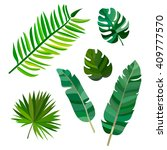 set of green palm leaves with... | Shutterstock .eps vector #409777570