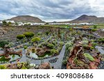 Cactus Garden On Lanzarote...