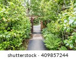 a hidden gate is opening up to... | Shutterstock . vector #409857244
