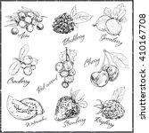 vector hand drawn set of berries | Shutterstock .eps vector #410167708