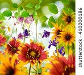 different beautiful flowers in... | Shutterstock . vector #410200186