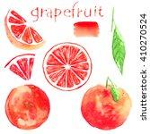 set the grapefruit. watercolor... | Shutterstock . vector #410270524
