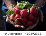 organic vegetables. farmers... | Shutterstock . vector #410392333
