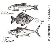 vector fish silhouettes hand... | Shutterstock .eps vector #410533144