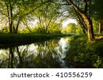 morning in the wild garlic... | Shutterstock . vector #410556259
