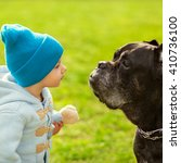 Stock photo little child and dog are looking at each other playing on the grass cane corso psychological 410736100