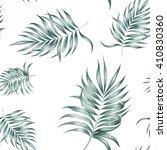 tropical silk palm plant... | Shutterstock . vector #410830360