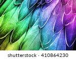 shoebill  feathers detail  ... | Shutterstock . vector #410864230