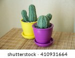Knitted Cactus Or Handmade...
