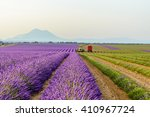 harvesting lavender field... | Shutterstock . vector #410967724