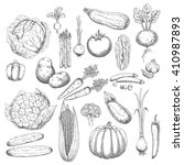sketches of healthy and fresh... | Shutterstock .eps vector #410987893
