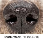 Closeup Photo Of Texture On A...
