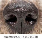 closeup photo of texture on a... | Shutterstock . vector #411011848