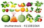 different kind of fruits... | Shutterstock .eps vector #411081064
