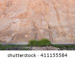 grass patch in front of large... | Shutterstock . vector #411155584