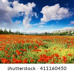 wonderful view field of red... | Shutterstock . vector #411160450