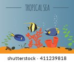tropical sea graphic template....